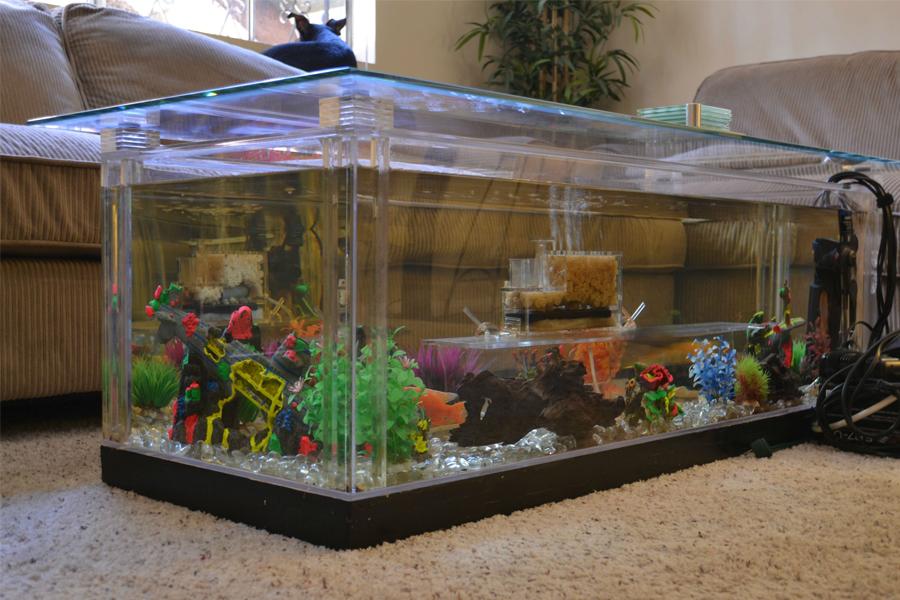 Orient Glass Fish Tanks In Chennai